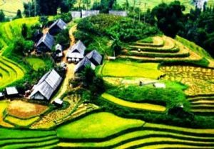 Sapa Trekking 2 days 3 nights - TheSinhTour.Com