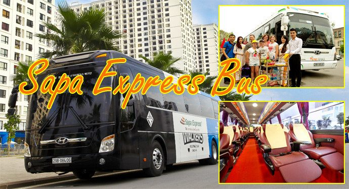 sapa-express-bus