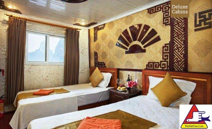Golden Bay Cruise (10)