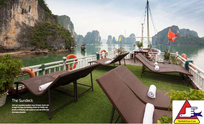 Golden Bay Cruise (4)