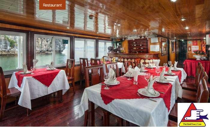 Golden Bay Cruise (5)