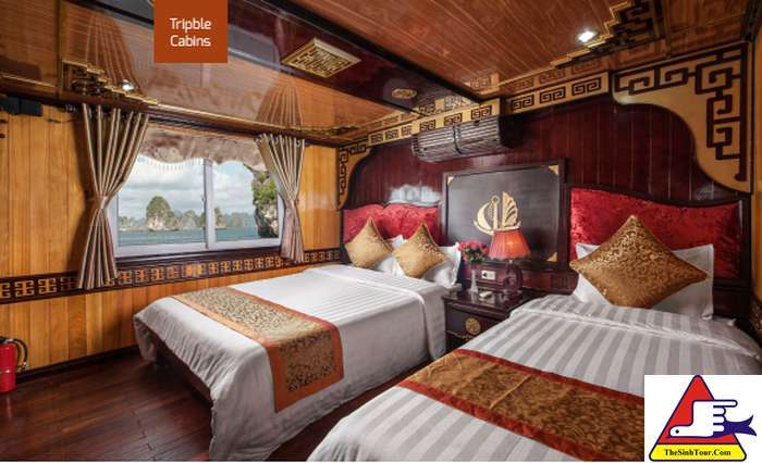 Golden Bay Cruise (6)