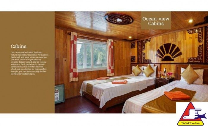 Golden Bay Cruise (8)