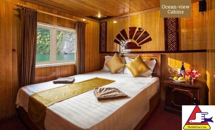 Golden Bay Cruise (9)