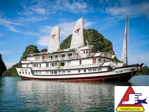 Du thuyen Signature Cruise