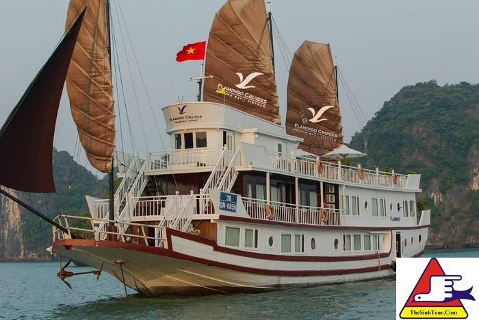 Halong Flamingo Cruises (3)